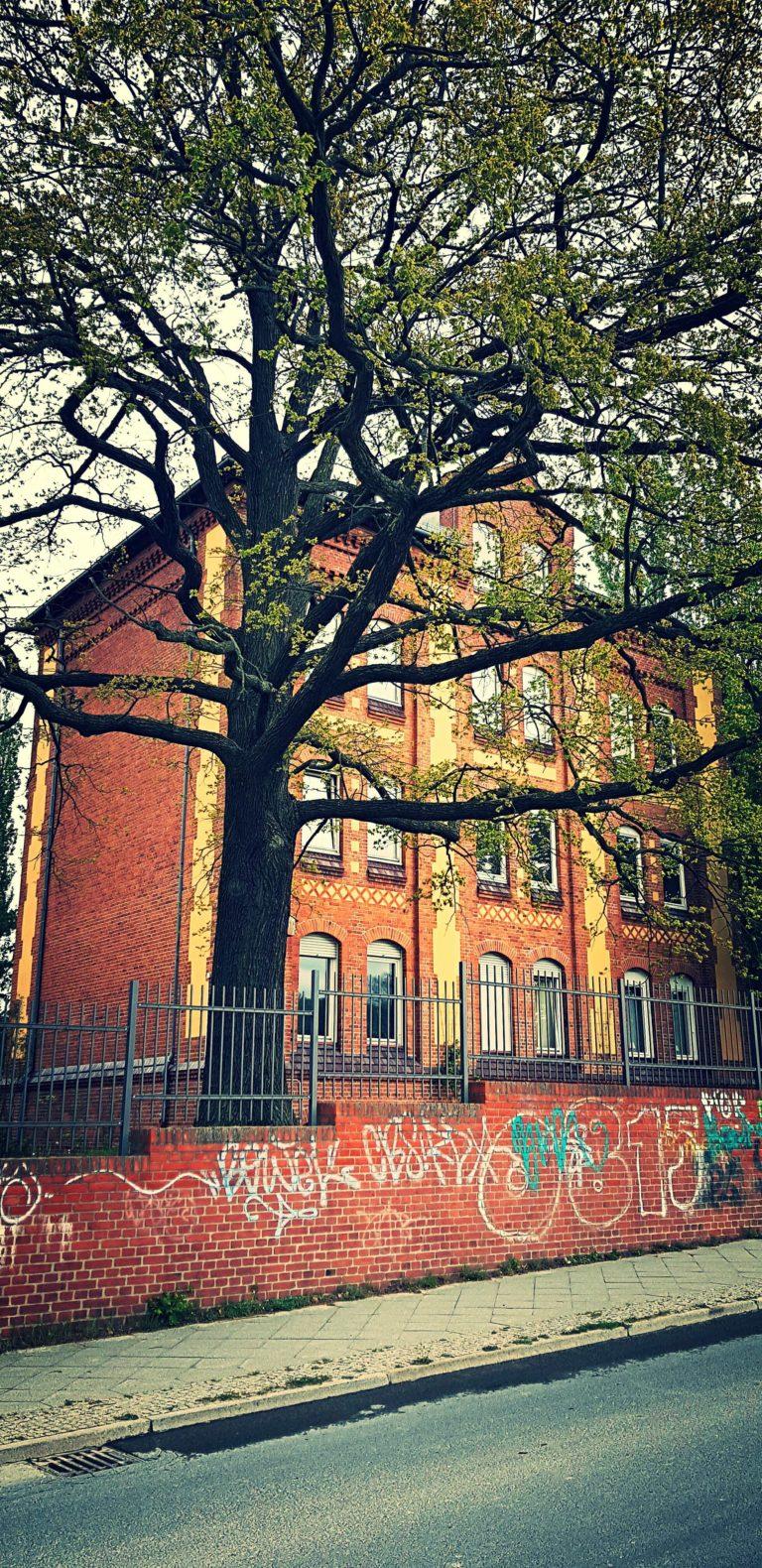 Am Beelitzhof, Berlijn