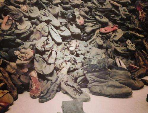 Meisje in Auschwitz